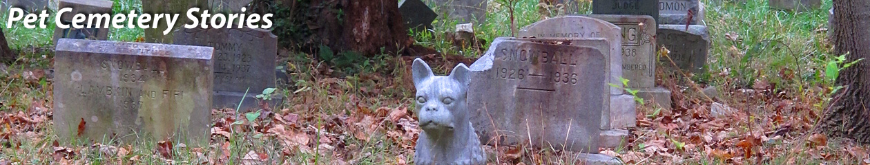 Pet Cemetery Stories