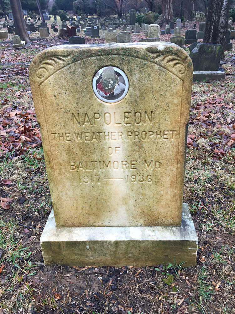 Napoleon the Weather Prophet of Baltimore MD