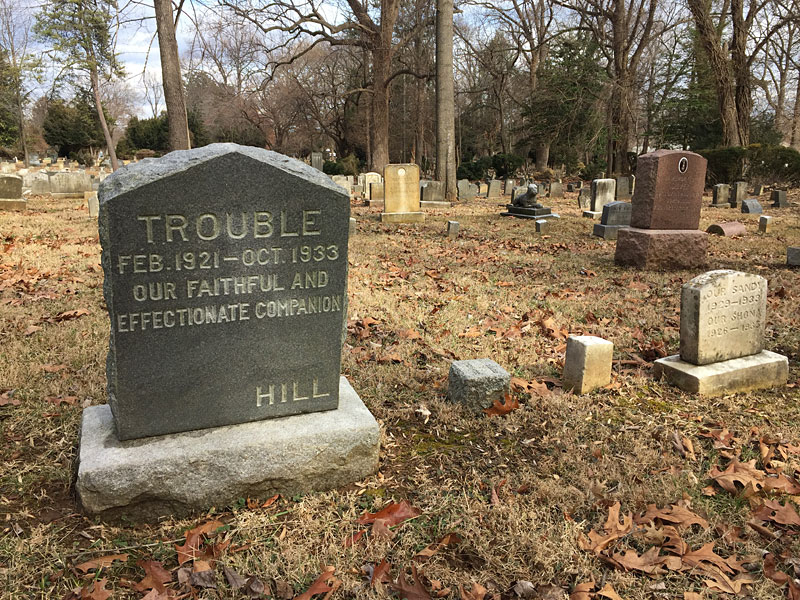 Trouble - Our Faithful and Effectionate Companion. (photo of pet cemetery)