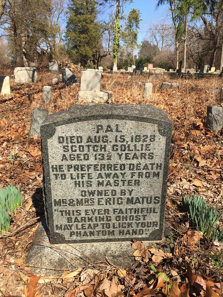 Pal, Scotch collie of Eric Matus. Aspin Hill Memorial Park.
