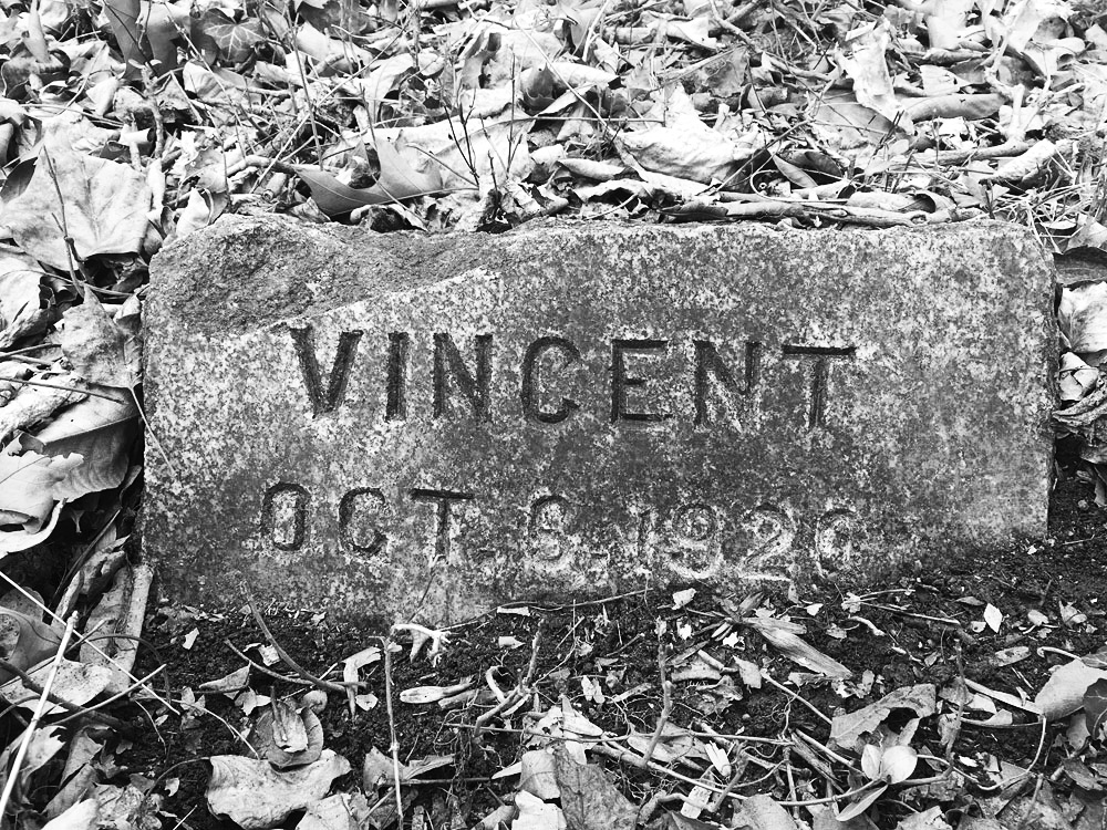 Vincent, a horse. Died October 6 in Richmond, Virginia. Buried at Aspin Hill Cemetery for Pet Animals. Photo by Julianne Mangin, March 2018