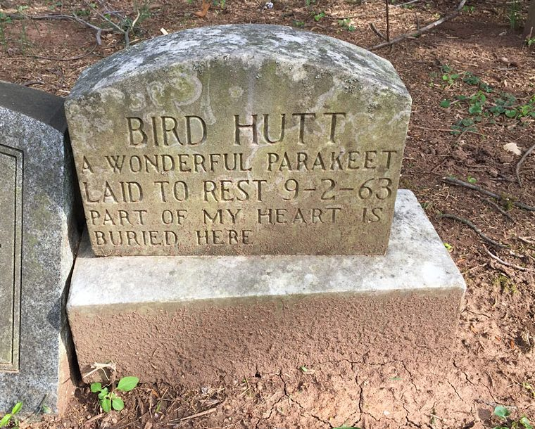 Bird Hutt -- A Wonderful Parakeet, Laid to Rest 9-2-63. Part of My Heart is Buried Here. Aspin Hill Memorial Park.