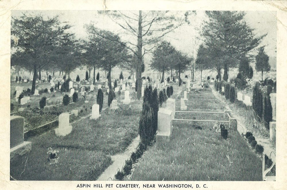 "Postcard, ""Aspin Hill Pet Cemetery, near Washington, D. C."" ca. 1945. From the digital collection of the Montgomery County Historical Society."