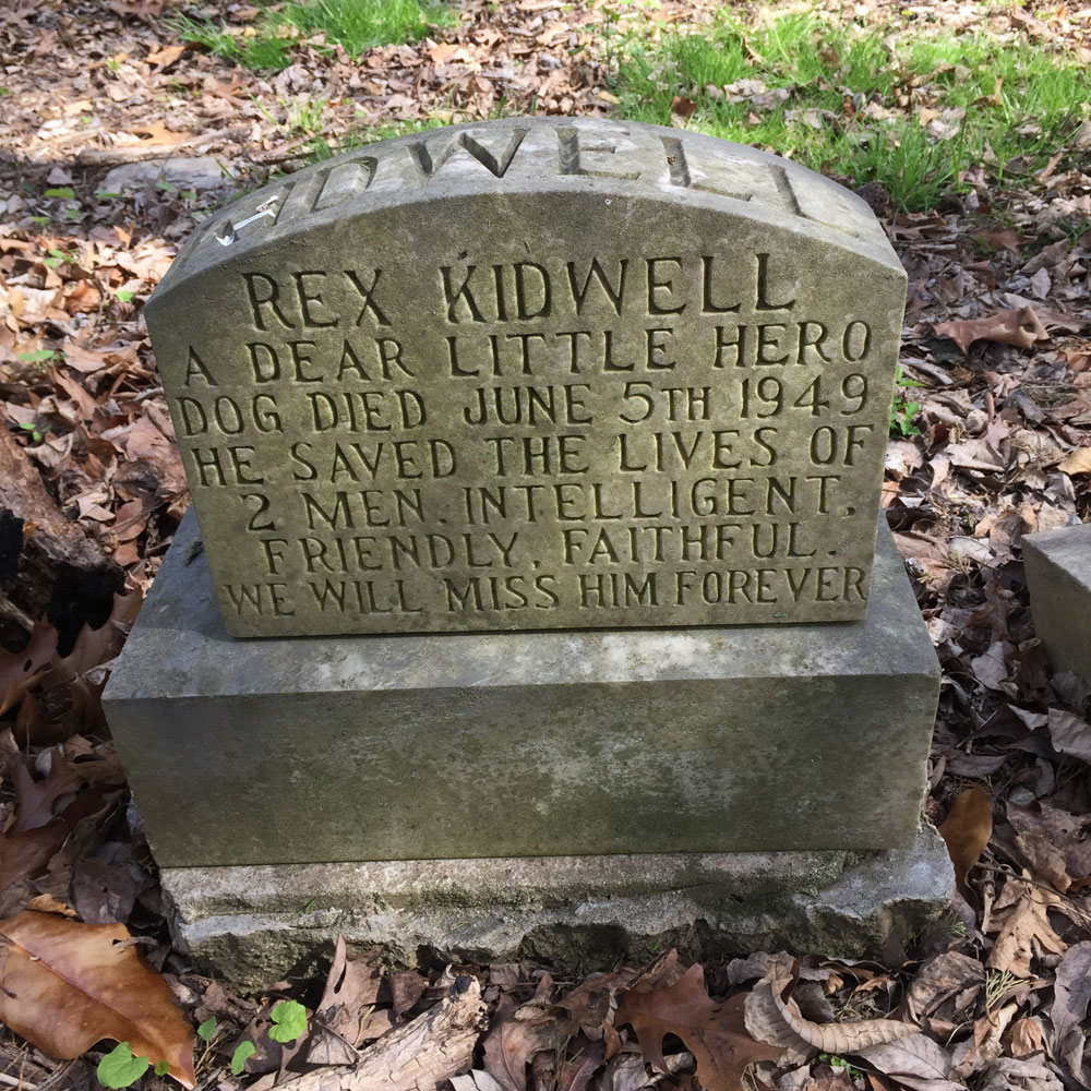 Rex Kidwell - A Dear Little Hero. Aspin Hill Memorial Park.