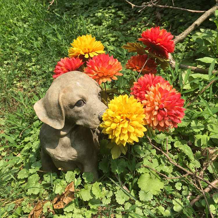 Dog statue with flowers (July 2018) dog statues