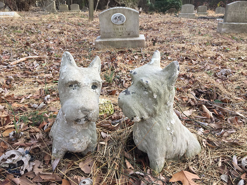 Two Scottish terriers (January 2017) dog statues