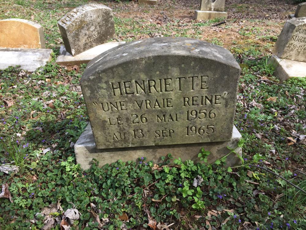 """Henriette """"Une Vraie Reine"""" Le 26 Mai 1956 au 13 Sep 1965. (April 2018)"""