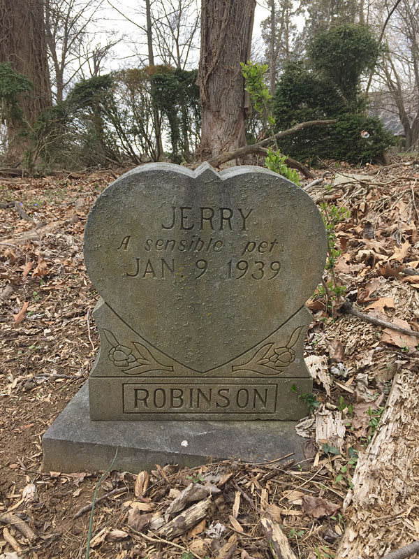Jerry A sensible pet Jan. 9 1939. [Robinson] (April 2018)