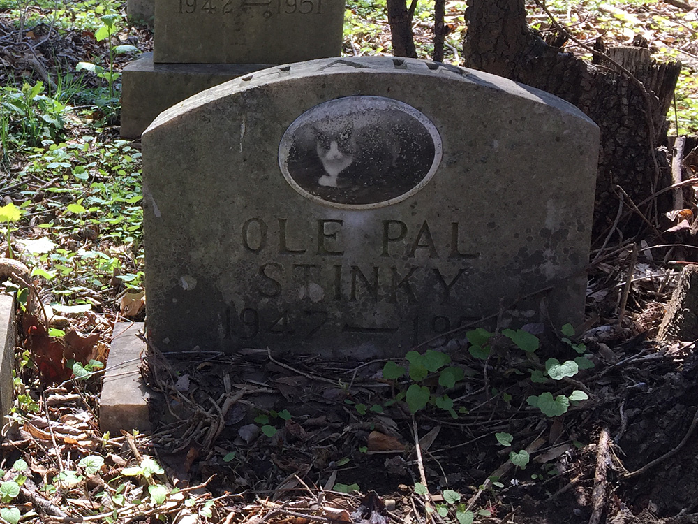 Ole Pall Stinky 1947-195? (April 2018)