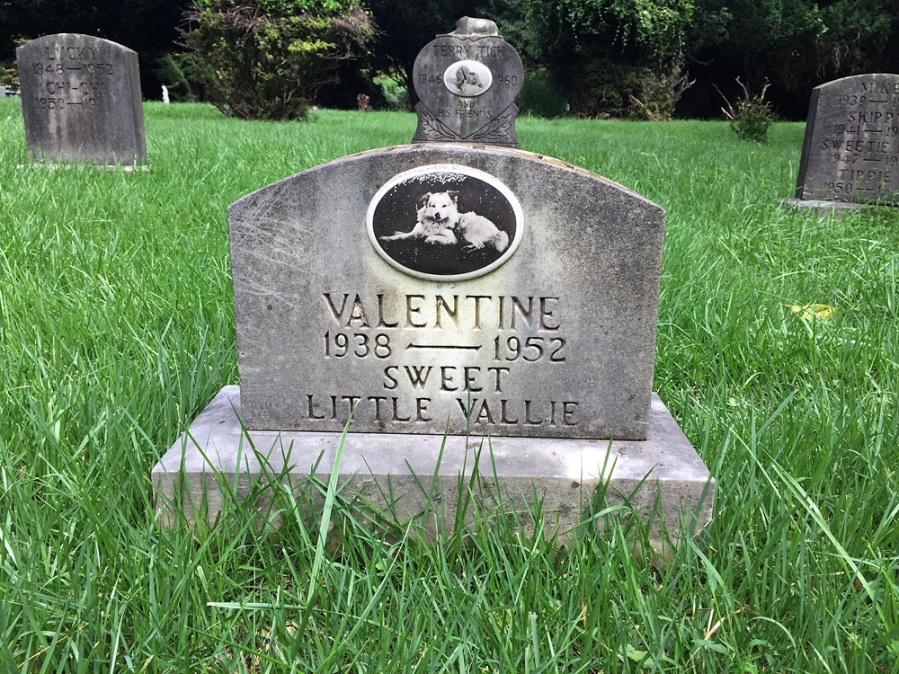 Valentine 1938-1952 Sweet Little Vallie. (September 2018)