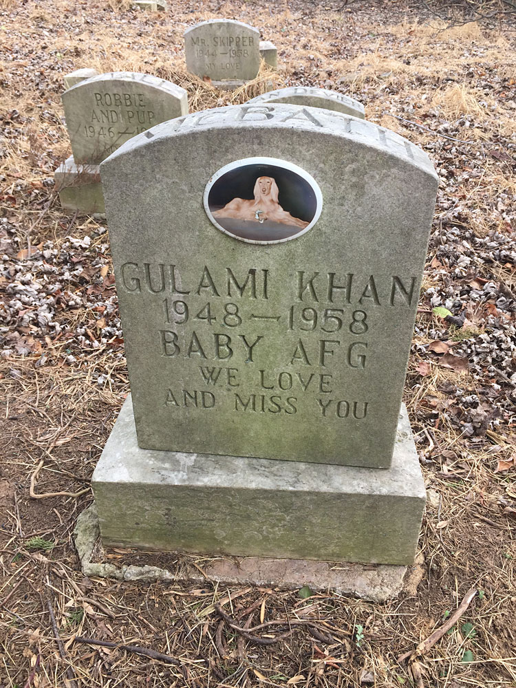 Gulami Khan 1948-1958 Baby AFG we love and miss you. (February 2017)