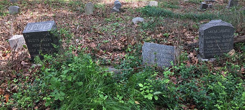 Snook Plot, Aspin Hill Memorial Park, May 2018