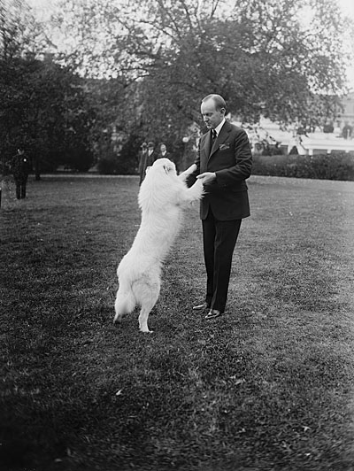 "Pres. Coolidge with ""Rob Roy,"" 1924 October 31. National Photo Company Collection. Library of Congress call number: LC-F81- 33110"