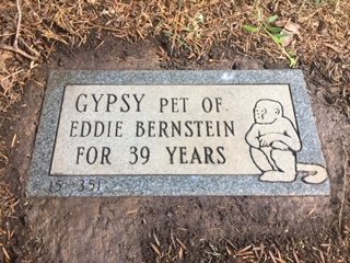 Grave stone of Gypsy. Aspin Hill Memorial Park.