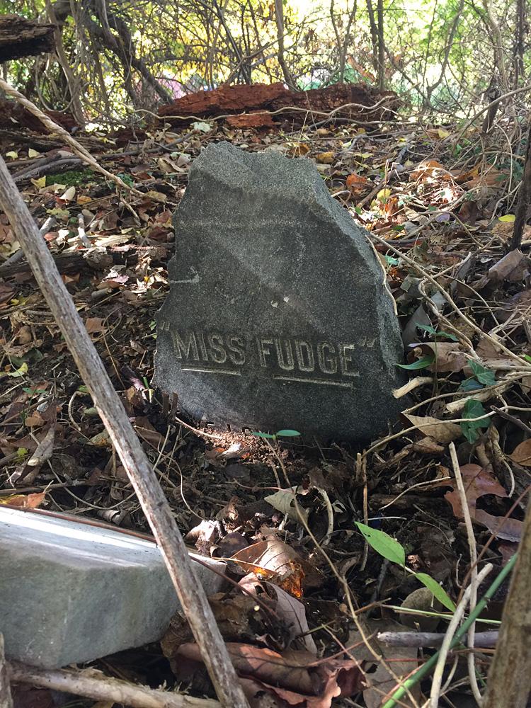 Miss Fudge's grave stone. October 25, 2019