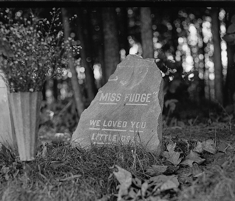 Dog cemetery, Miss Logan's dog [1921]. National Photo Company Collection. Library of Congress Call Number: LC-F8- 16117 [P&P]