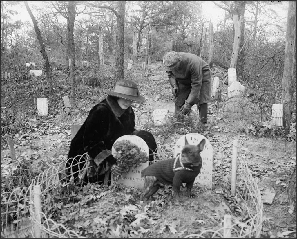 Dog cemetery. ca. 1916-1917. National Photo Company Collection. Library of Congress Call Number: LC-F82- 1694 [P&P]
