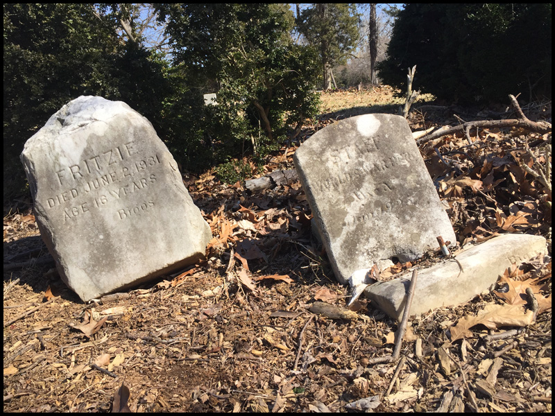 Fritzie and Staff grave stones. J. Mangin, March 2021