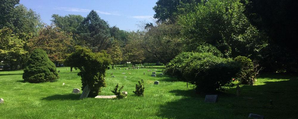 Aspin Hill Memorial Park, August 2021